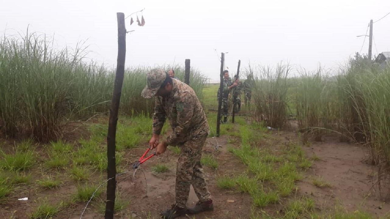 آزادسازی اراضی ملی و انهدام شبکه قاچاق چوب در شفت