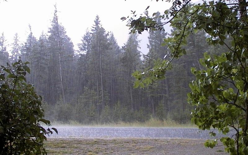 کاهش ۱۰ درجه ای دما و آغاز بارش ها از امروز در گیلان