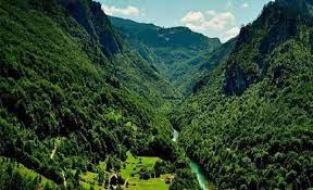 ثبت ملی جنگل های هیرکانی