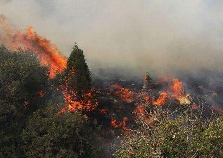 وقوع ۶ فقره آتش سوزی در جنگل های گیلان