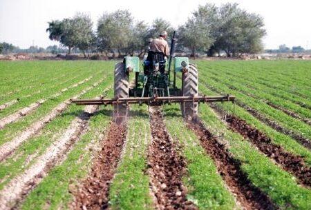 تحقق ۸۵ درصدی اشتغال در بخش کشاورزی