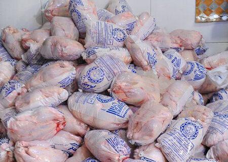 جریمه میلیاردی قاچاقچیان مرغ در گیلان