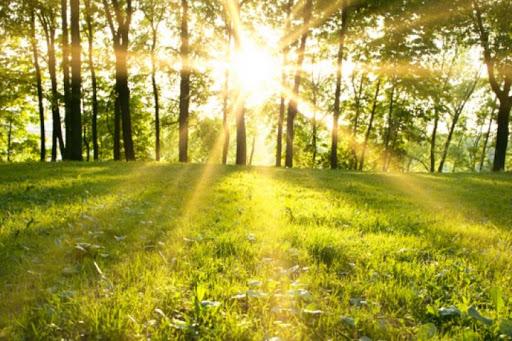گرمای تابستان در بهار گیلان