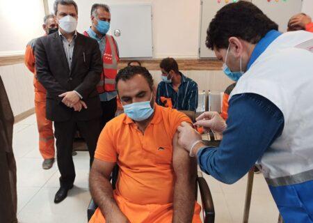سوءاستفاده از سهمیه واکسن پاکبانان این بار در اردکان یزد