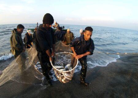 صید ماهیان استخوانی از خوان پرنعمت خزر